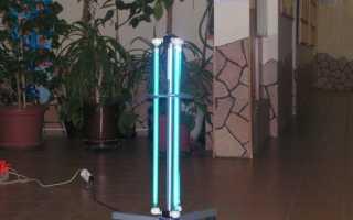 Какие микробы убивает кварцевая лампа в помещении