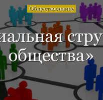 Что такое социальная структура общества