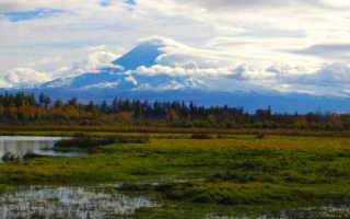 Почему на Камчатке много действующих вулканов