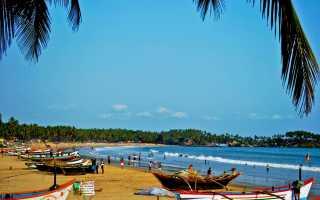 Какие пляжи Гоа лучшие