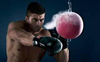 Как получить КМС по боксу