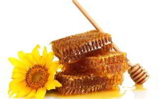 Как правильно выбрать мёд при покупке