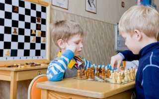 Какие качества развивают в человеке шахматы