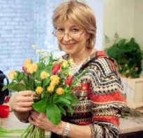 Почему не цветут комнатные луковичные растения